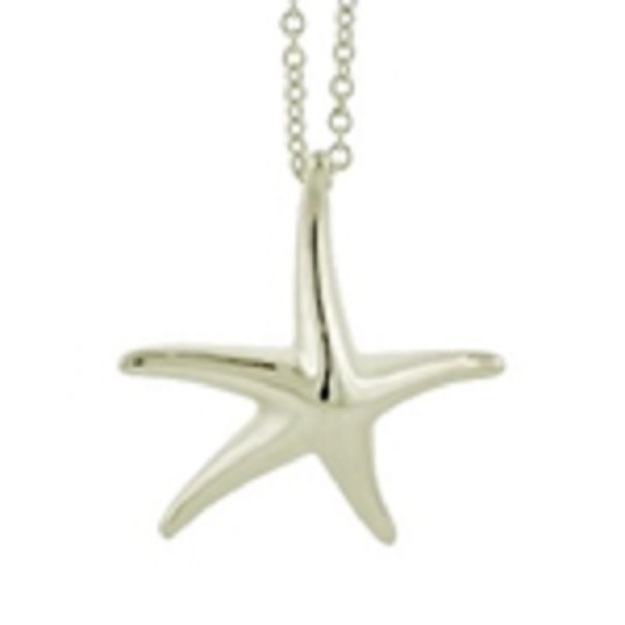 Sterling_Silver_Large_Star_Fish_Necklace