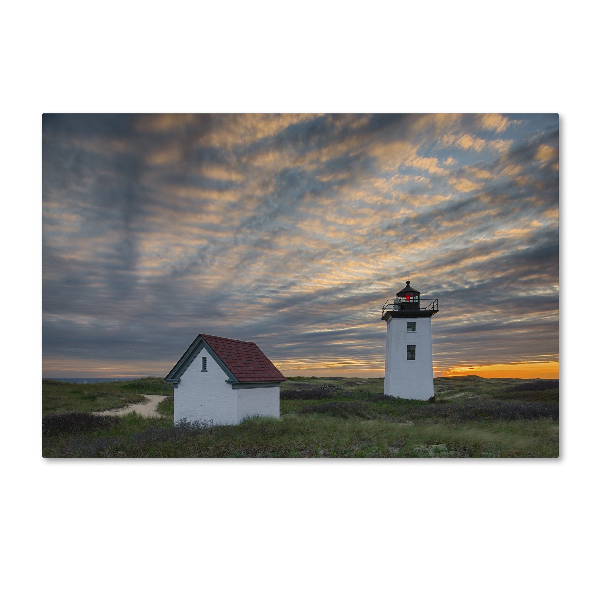 Michael Blanchette Photography 'Light Ripples' Canvas Art 16 x 24