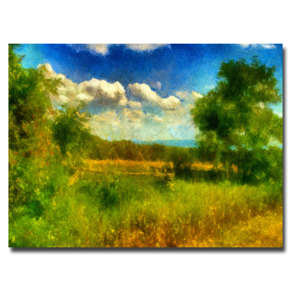 Lois Bryan 'Split-Rail Fence' Canvas Art 16 x 24