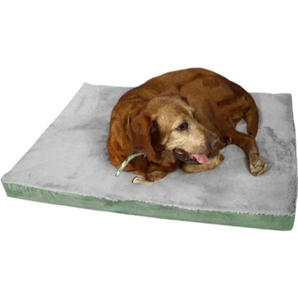 M06Hhl/hs-M Armarkat Memory Foam Orthopedic Pet Bed Pad in Sage Green and Gray 5899558cc98fc41ef3342766