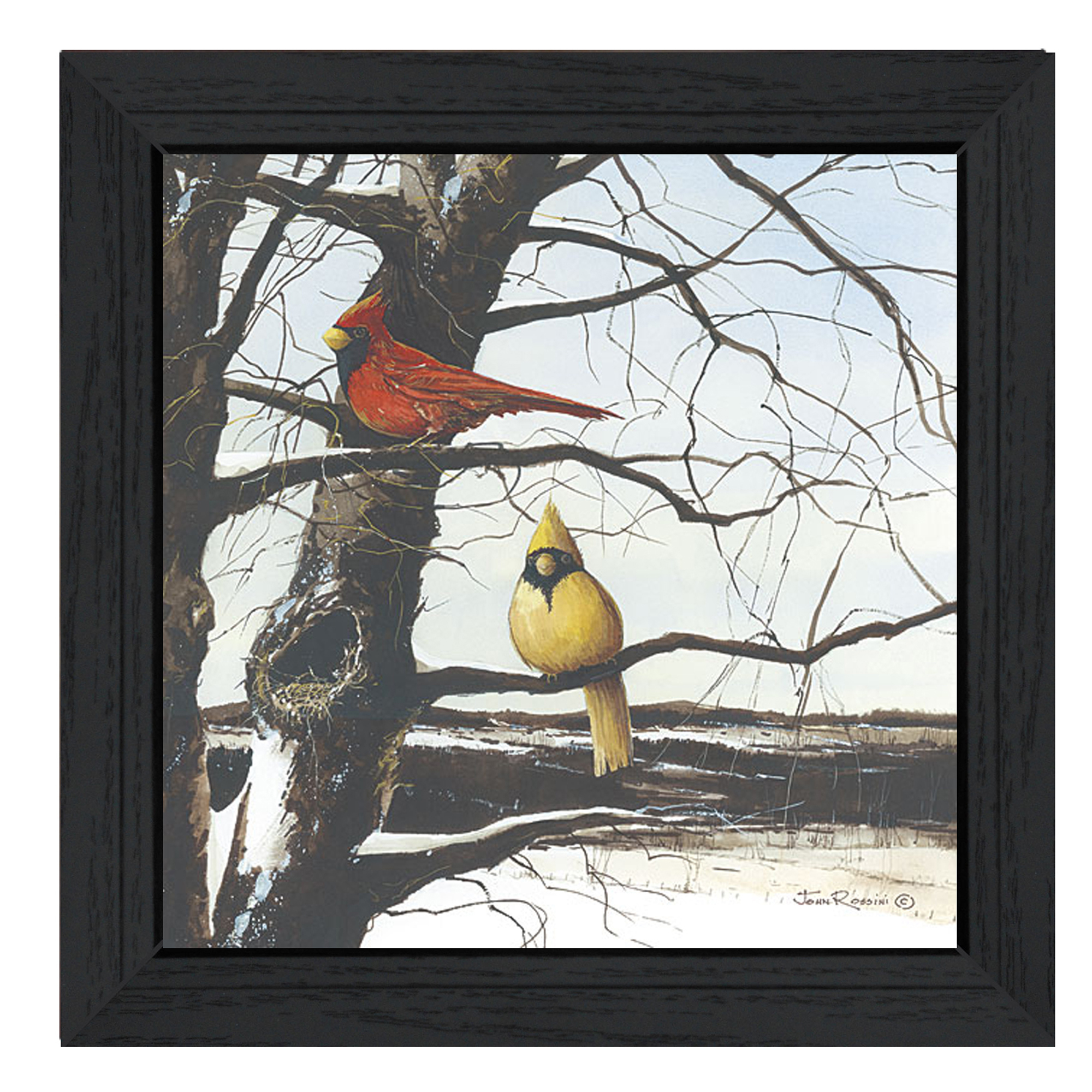 "Jr197-405 ""A View from Above"" is a 15""x15"" black framed print. This artwork features two birds sitting on tree branches. This totally American Made wall decor item features an attractive frame, a textured canvas like finish so no glass is necessary and is ready to hang. * Made in the USA * Women Owned (Wbe) * Textured Artwork with a 'rolled on' acid free acrylic coating to create a canvas painting effect. No glass is necessary. * UV protectant coating protects artwork from fading. * MDF moulding adds natural beauty to the framed art. Frame is keyholed for ease of hanging."