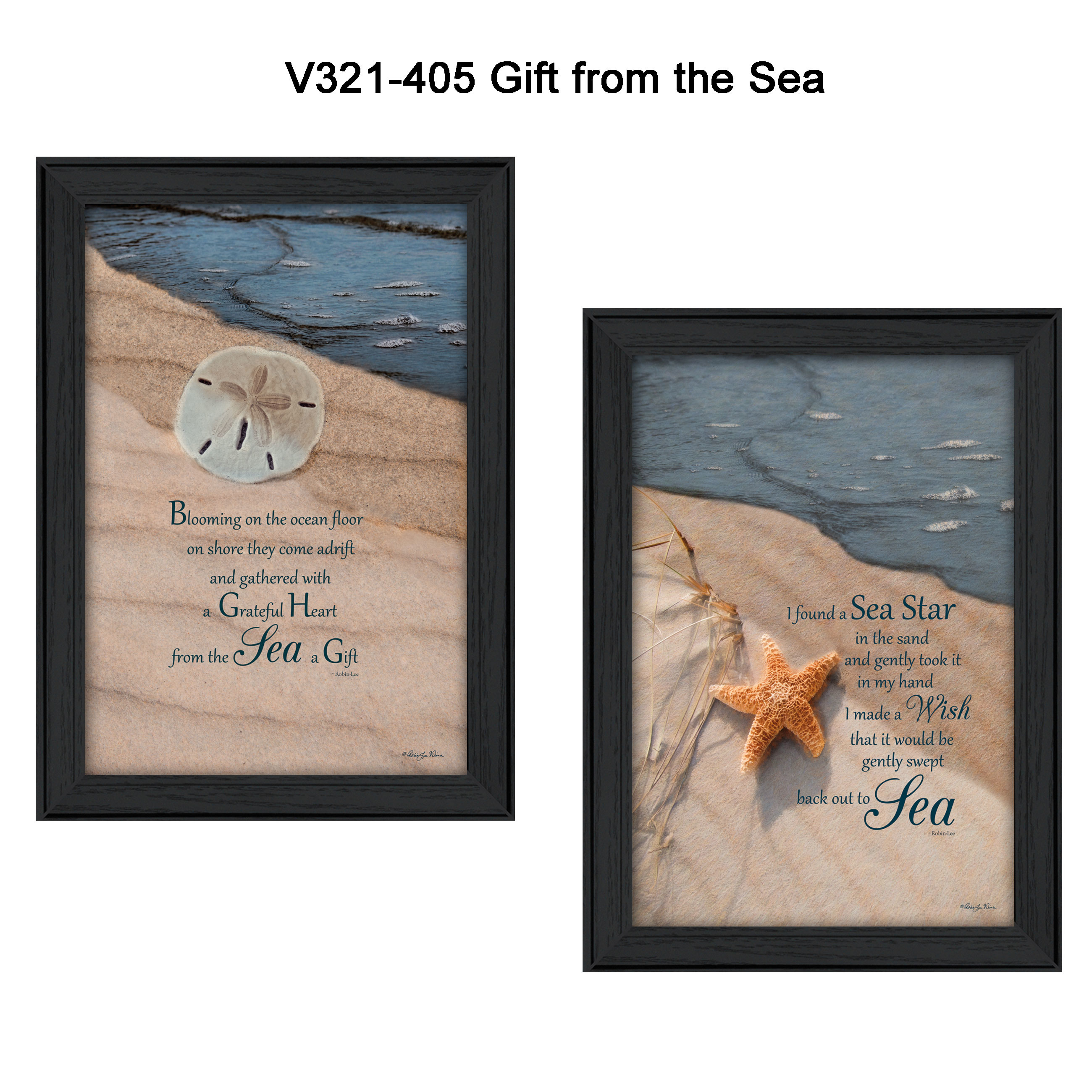 """A Gift from the Sea"" are 2- 15""x21"" framed art prints by Robin Vieira. This print is a framed in a decorative black frame. A Gift from the beach???Sand Dollar. The print has a protective, archival finish (glass is not needed) and arrives ready to hang. * Made in the USA * Women Owned (Wbe) * Textured Artwork with a 'rolled on' acid free acrylic coating to create a canvas painting effect. No glass is necessary. * UV protectant coating protects artwork from fading. * Arrives Ready to Hang"