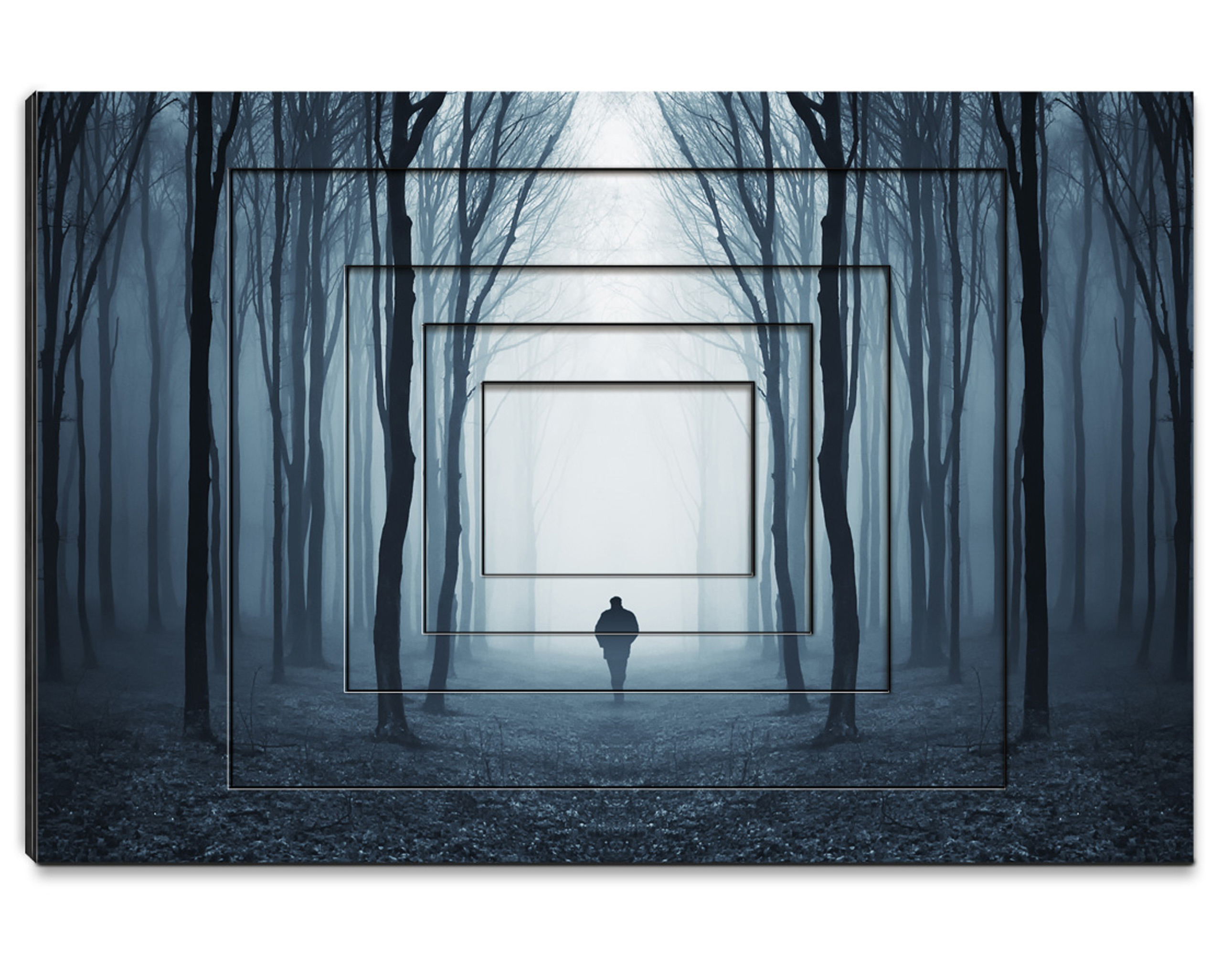 """The Woods - Forest Walk, Wanderer, Black and White 23.8\"""" x 15.8\"""" Print on Wood"""