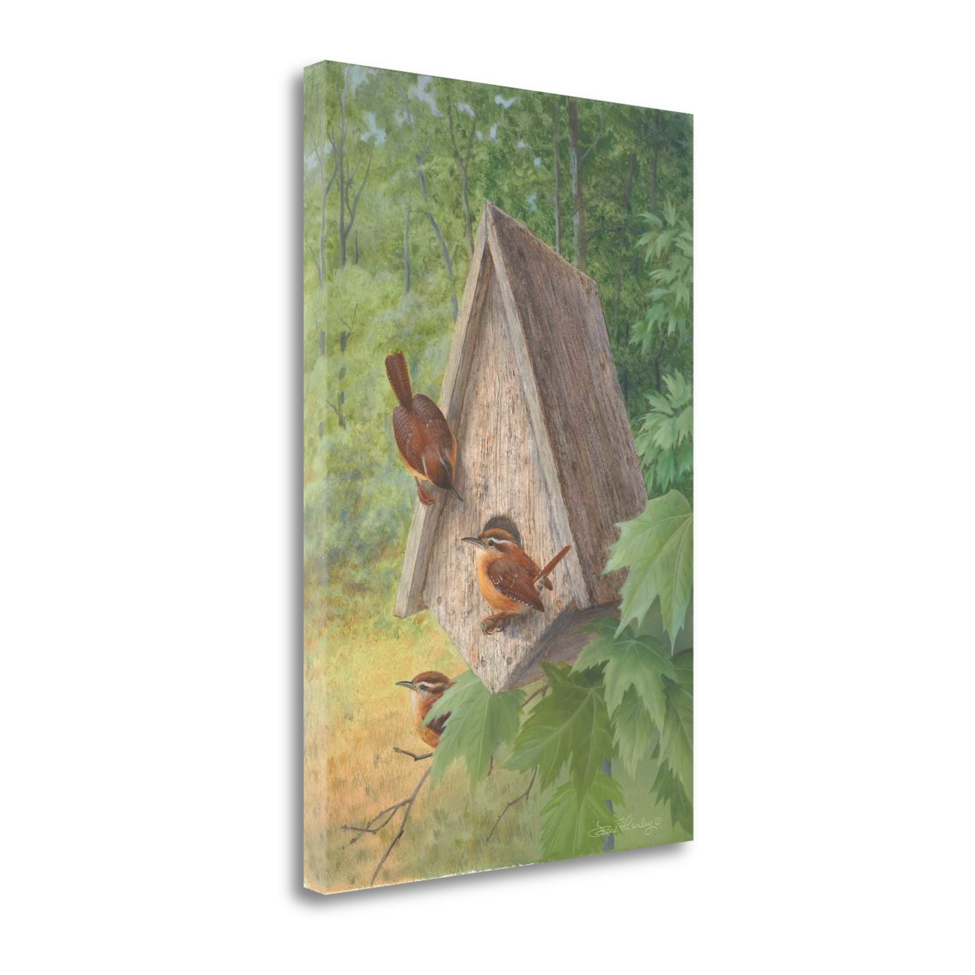 "Bird House By Bob Henley, 19"" x 28\"" Fine Art Giclee Print on Gallery Wrap Canvas, Ready to Hang"