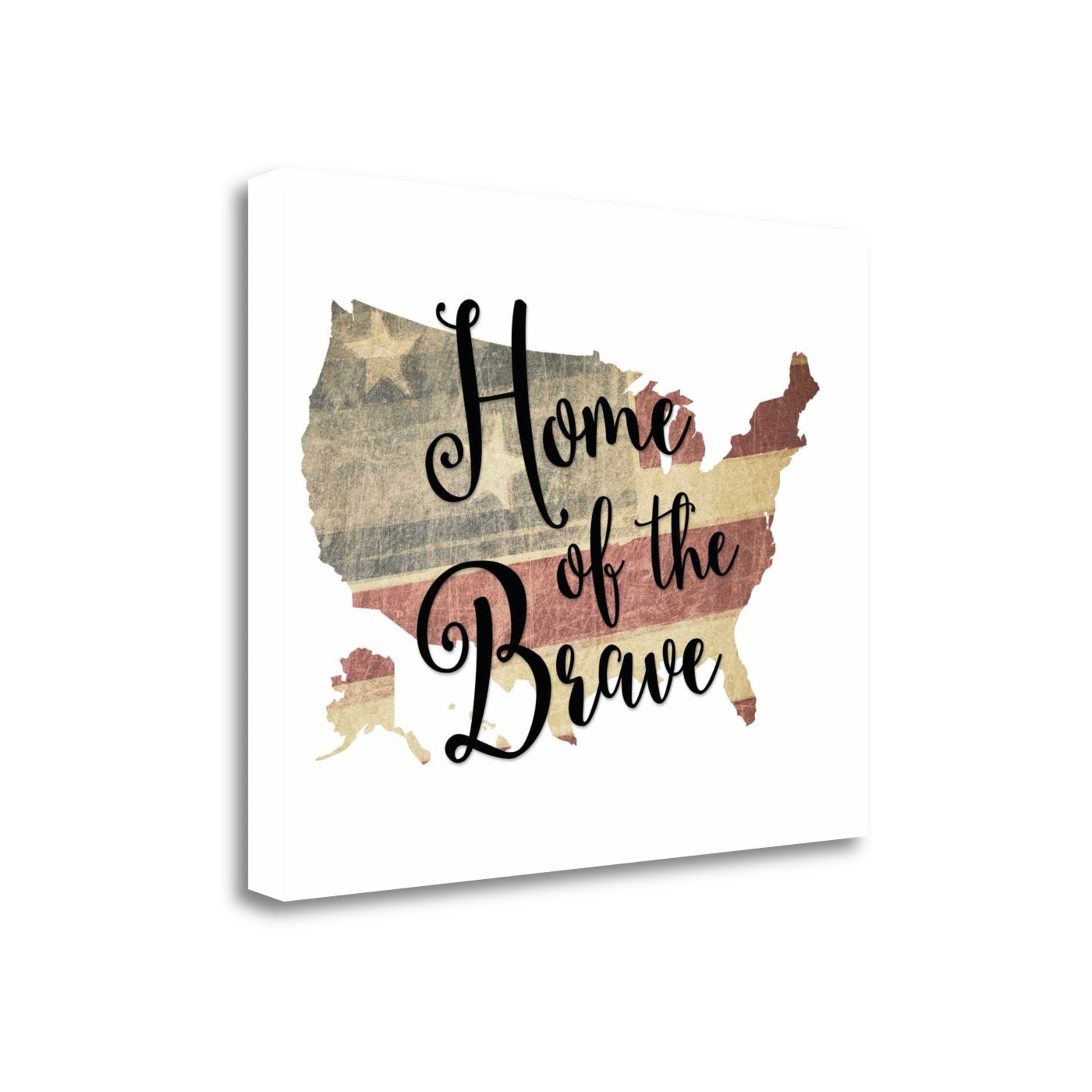 "Home Of The Brave By Tara Moss, 20"" x 16\"" Fine Art Giclee Print on Gallery Wrap Canvas, Ready to Hang"