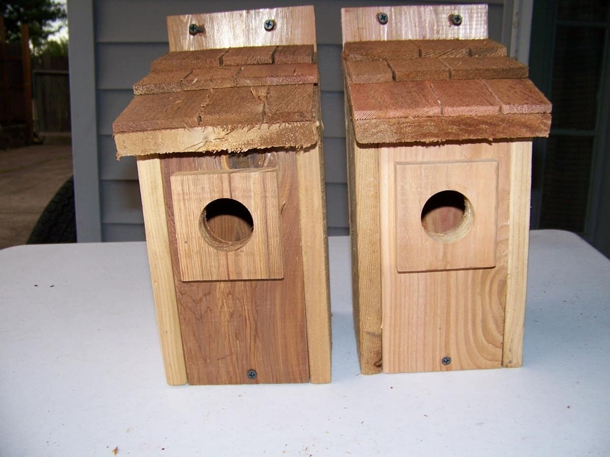 2- Bluebird bird houses bird nest with cedar shake roof (CEDARNEST) photo
