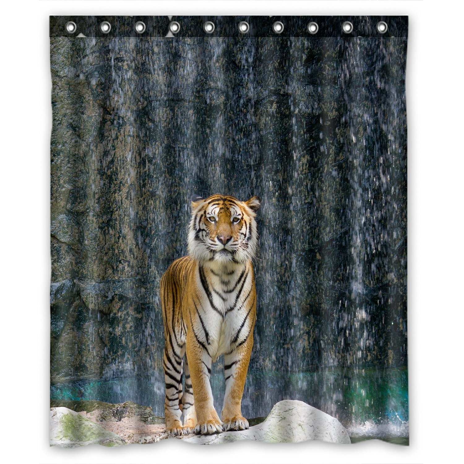 Animal Shower Curtain, Tiger Standing on the Rock near the waterfall mountain landscape Shower Curtain 60x72 inch